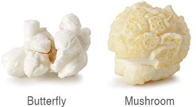 Butterfly vs. Mushroom Popcorn